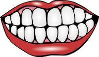 Cheap Health Or Dental Insurance Free Quote Call 1 877 273-4088