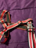 Large Breed Dog Harness
