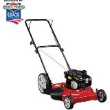 $100, Lawn mower, weed eater and blower set