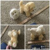 American Girl Doll dogs Honey and Coconut, both in GUC overall with light spots of wear, no holes, no rips, soft, $5.00 takes both.
