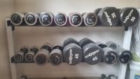 Free weights and storage rack.