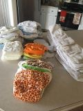 32 WASHABLE DIAPER AND INSERTS
