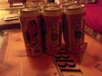 1999 Dale Earnhardt Jr collector cans