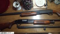For Sale/Trade: Mossberg 500