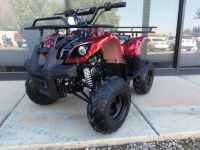2016 Moto X ATV 125 Red Spider