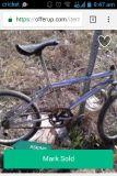 $100, Redline BMX bike