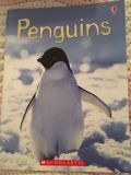 Informative book about penguins