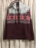 American Eagle Outfitters Hooded Jacket