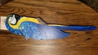 Large hand blue and gold macaw by local San Diego artist Jan Kadlecik Beak Street Signed by artist