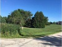 Foreclosure Property in Wadsworth, IL 60083 - W Martin Ave