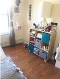 Queen Sized room available in Williamsburg apartment
