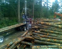 Self Loader Log Hauling Washington, Logging Trucks Timber Puget Sound