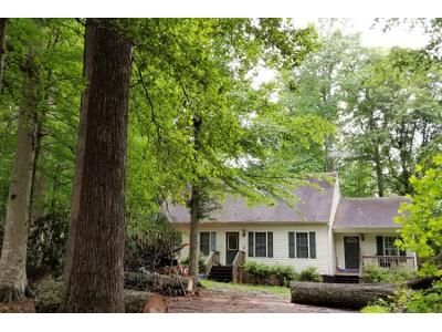 4 Bed 2 Bath Preforeclosure Property in Disputanta, VA 23842 - Shannons Ln