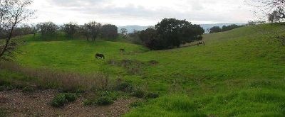 Land for Development in Gilroy, California, Ref# 24698