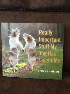 Really important stuff my dog has taught me by Cynthia L Copeland