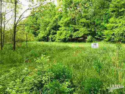 8110 Hollopeter Road Leo, Prime 16 acres of scenic area with