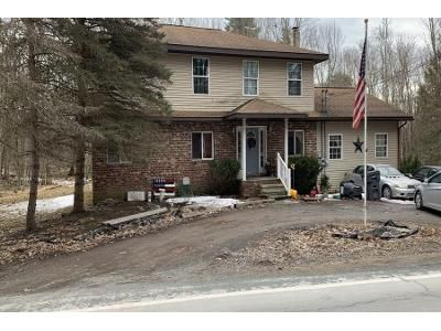3 Bed 2 Bath Preforeclosure Property in Lakeville, PA 18438 - Crane Rd