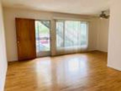Spacious One BR Apartment Blocks from The Beach!