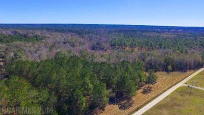 Beautiful Wooded 20 Acres in Outskirts of Fairhope!