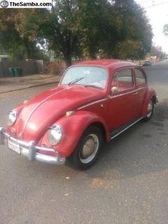1965 sunroof bug