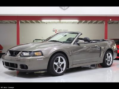 2003 Ford Mustang SVT Cobra (Mineral Grey)