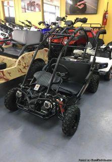 Trail master mini xrs go kart 5.5 hp engine