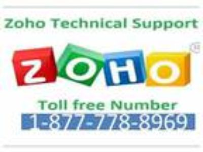 Dial[ ::(1 [phone removed])::] zohomail customer care(USA)