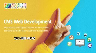 CMS development Service Houston