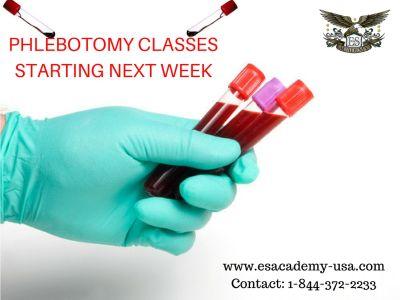 Phlebotomy Training, call 609 227 4488