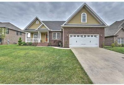 4213 Anchor Pointe Kingsport Four BR, Check out this immaculate