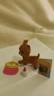 Tiny rubber dog with book visor , and bottle.