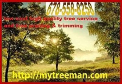 678-558-8258-MY TREEMAN  Tree Service - Price: Varies/reasonable mytreeman.com
