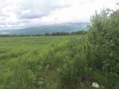 5769 N PC Road Wasilla, This 5 acre parcel sits on level