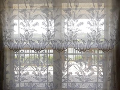 Beautiful Lace Curtains (set of 2)