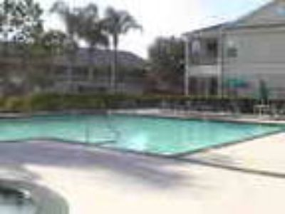 Vacation Holiday Rental Near Disney In Kissimme Florida Usa