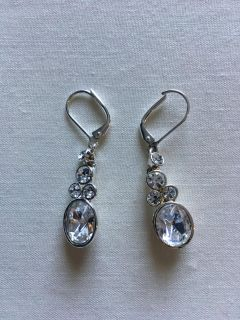 EUC Sparkly Earings