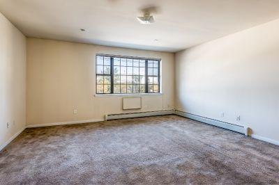 1 bedroom in Canarsie