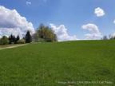 Bruceton Mills Property
