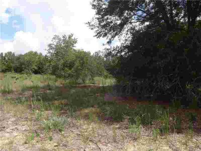 2508 Adams Street Inverness, High and dry .25 acre lot
