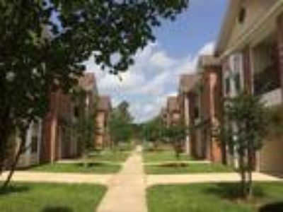 The Creeks Apartments - 2 BR