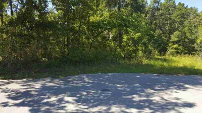 0 Canvasback Drive Eutawville, Almost 8 acres of Beautiful