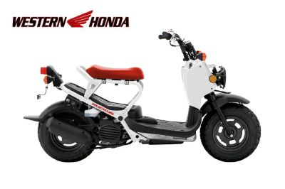 2016 Honda Ruckus 250 - 500cc Scooters Scottsdale, AZ