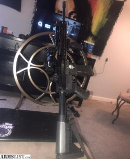 For Sale: Punisher ar15