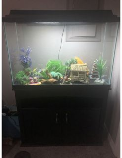 45 Gallon Fish Tank w/ Canister Filter