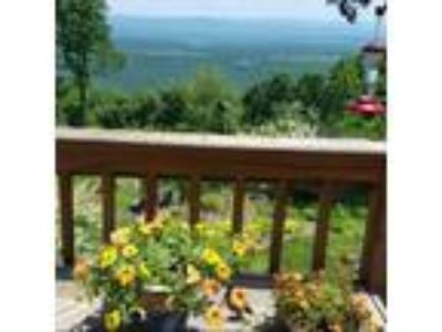Mountain Top Retreat For Sale, Mineral County, WV
