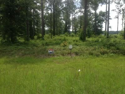 Foreclosure Property in Ocala, FL 34471 - Acres Corner Of SW 10th St & SW 27th Ave
