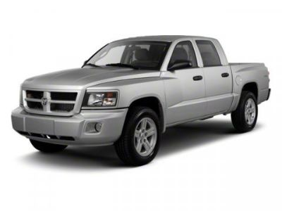 2010 Dodge Dakota Big Horn (Bright White)