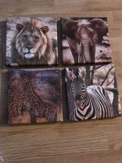 Canvas animal prints (8 x 8 inch squares)