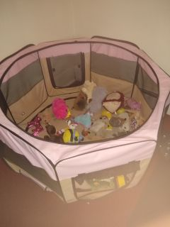 Pet play pen can fold up for easy storage