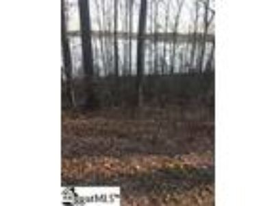 Unrestricted Waterfront Lot with Water Access...